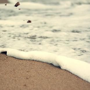 oceanswimmer