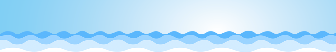 Digitalriver banner